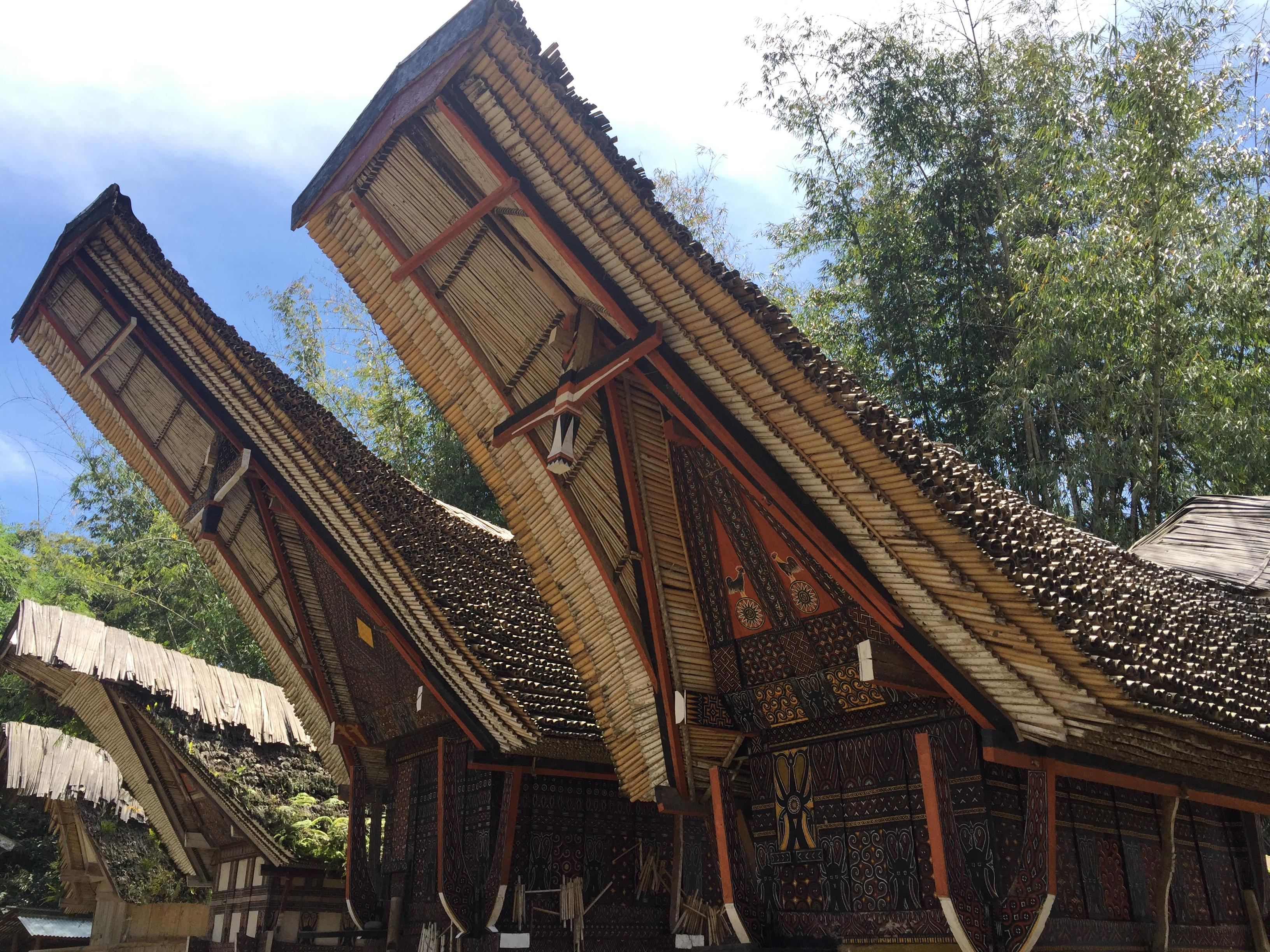 Traditional Tongkonan Houses