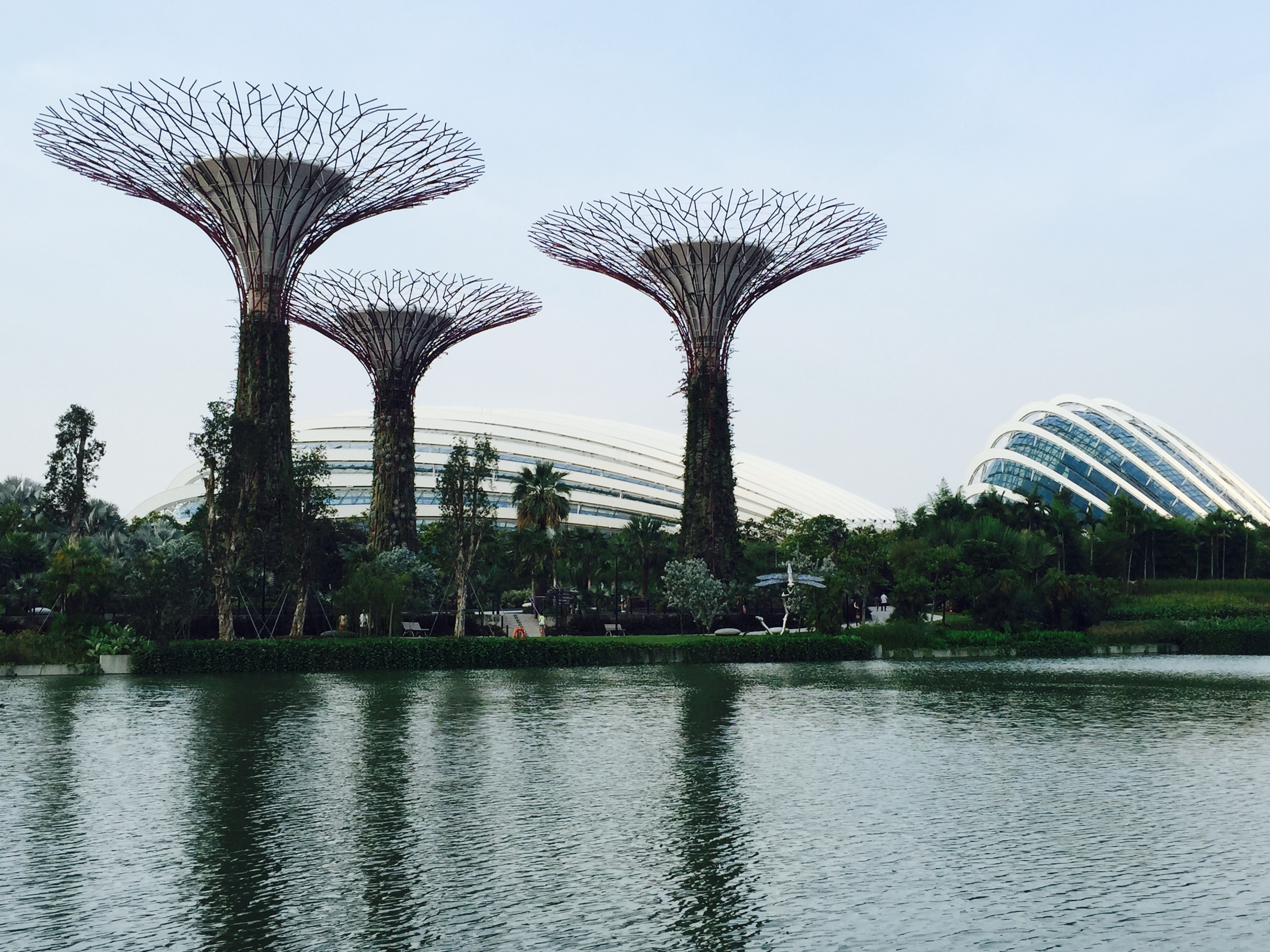 Singapore is NOT a concrete Jungle